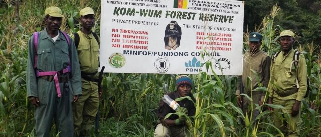 Some of the CIRMAD trained and managed community ecoguards for Kom-Wum Forest Reserve